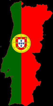 Преводач от португалски на испански